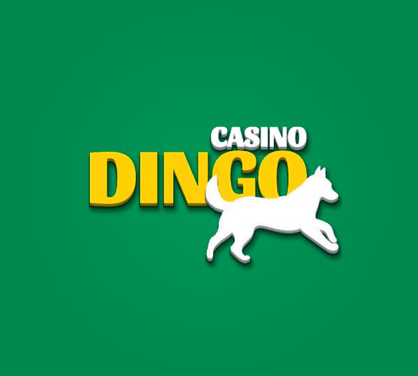 Casino Dingo