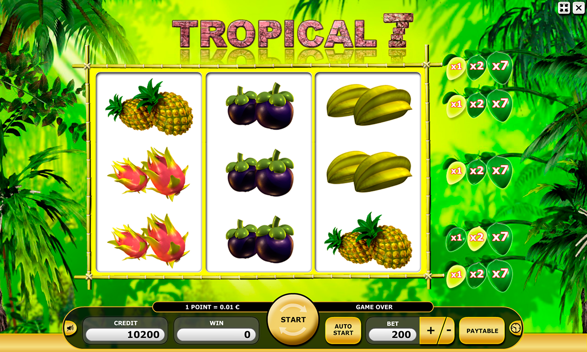 tropical 7 kajot